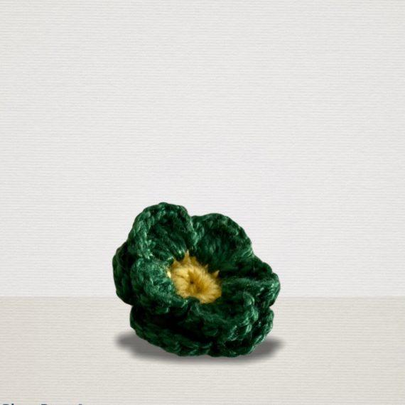 Grüne Ansteckblume mit gelber Blüte