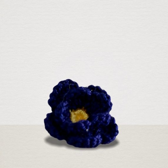 Elektrik Blaue Ansteckblume mit gelber Blüte