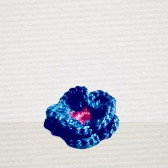 Blaue Ansteckblume mit Pink Blüte